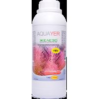 Aquayer Железо 1 л удобрение для растений
