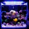 Свет для морского аквариума