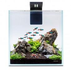 Аквариумный набор Nano Set 10 л для креветок и мелких рыб