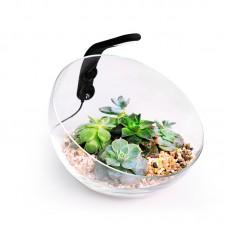 Wabi Set декоративный аквариумный набор для создания wabi-kusa