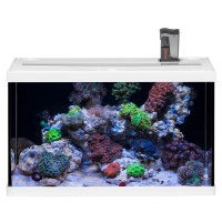 EHEIM aquastar 63 marine LED Морской аквариумный комплект на 63 л белый